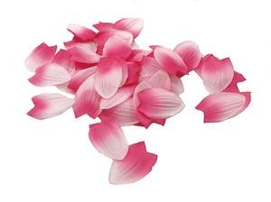 桜ペタル(約10g入り)