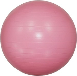 Interior Plants Ball Balance Ball Ball Pink