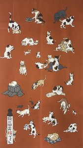 Japanese Noren Curtain Cat Making