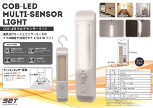 type LED Multi Sensor Light