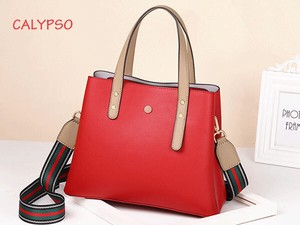 Bicolor Ladies Handbag