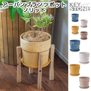 Plants Pot Solid