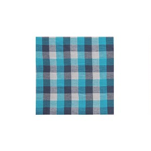 Poth Living Checkered Multi Cover Blue Light blue