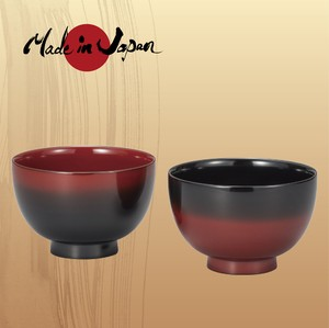 J-Story Soup BOWL in Pairs [ Gradation ]