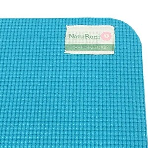 Reversible Mat Interior Plants Mat Blue