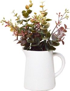 Green Pitcher Eucalyptus