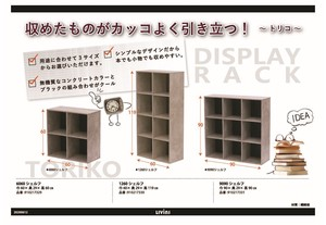 Literature & Fiction Book Tone Color Shelf Assembly Furniture Tricolor