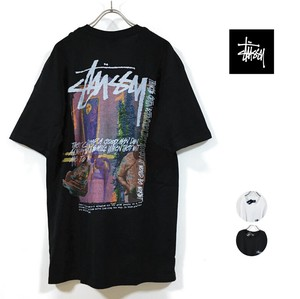 STUSSY ステューシー DAYDREAM Tシャツ 半袖