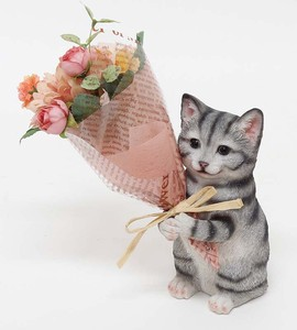 Bouquet American Shorthair