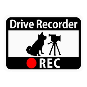 Drive Recorder Sticker Dog Video Camera Magnet