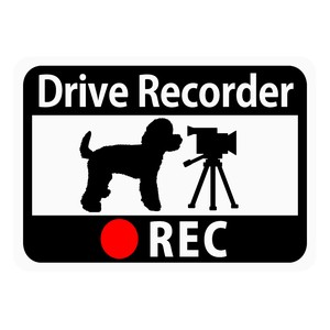 Drive Recorder Sticker Toy Poodle Video Camera Magnet
