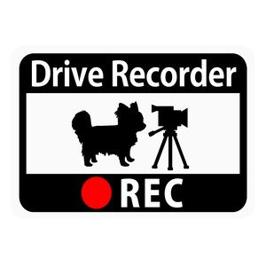 Drive Recorder Sticker Chihuahua Video Camera Magnet