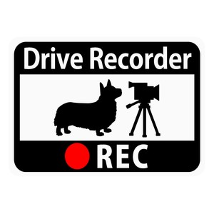 Drive Recorder Sticker Corgi Video Camera Magnet