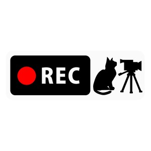 Drive Recorder Sticker Cat Video Camera Type Magnet