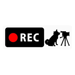 Drive Recorder Sticker Dog Video Camera Type Magnet