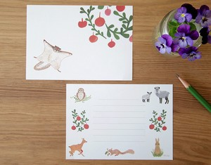 Letter Paper Flying Squirrel 35 Pcs