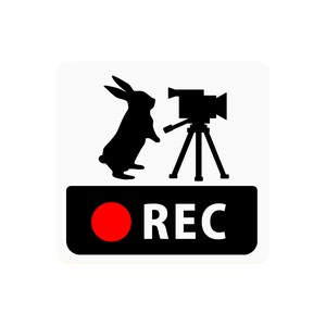 Drive Recorder Sticker Rabbit Video Camera Square Type Magnet