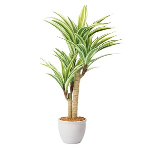 Work Stand Dracaena Artificial Artificial Plants Interior Real