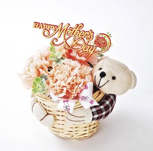 Arrangement Bear
