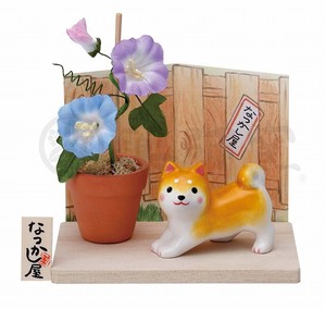 Taste Dog Weather Shiba Dog Morning Glory