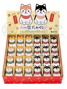 Taste Dog Weather Shiba Dog Display Set