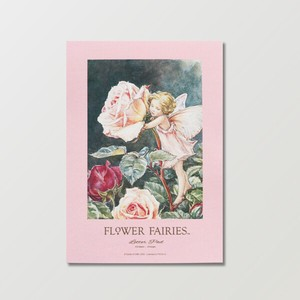 【Flower Fairies】レターパッド(Rose)