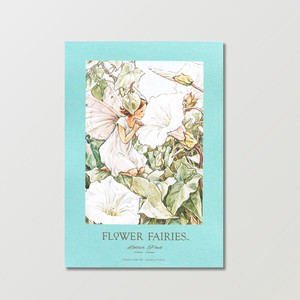 【Flower Fairies】レターパッド(White Bindweed)