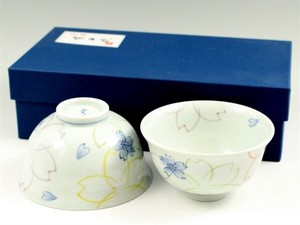 SOMETSUKE Overglaze Enamels Japanese Rice Bowl Couple Japanese Rice Bowl