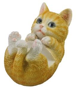 スマホスタンド cat チャトラ