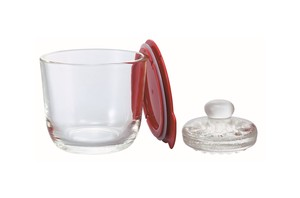Glass Overnight Salting Bowl S / Red