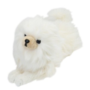 Dog Soft Toys Pomeranian