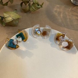 Resin Color Scheme Pierced Earring