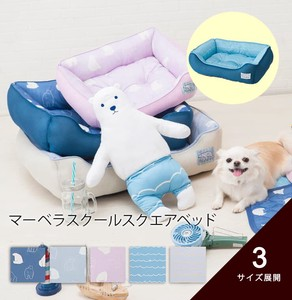 Cool Pet Bed for School