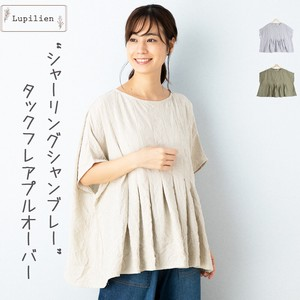 Shearing Chambray Stripe Tuck Flare Pullover