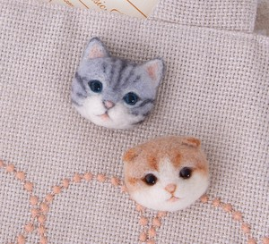 "American Shorthair Scottish Fold ""2020 New Item"""