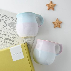 with box Gift Funwari Pale Tone Mug Set MINO Ware
