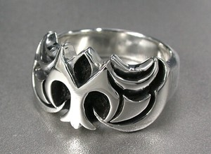 Silver Ring Impression Cenesthesia