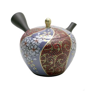 Pattern TOKONAME Ware Pattern Japanese Tea Pot Circle Shape Flower Japanese Tea Pot