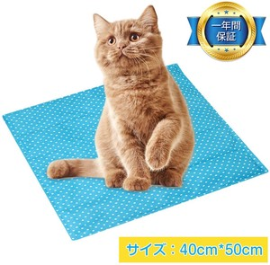 Cool Mat Mat Coolness Cushion