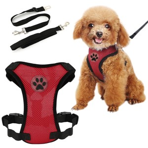 Pet Harness Puppy for Cat reed Set Basic