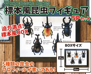 Insect Figure Set