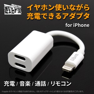 iPhone Earphone