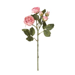 rose Rose Pink Mauve Dry Flower Artificial Flower