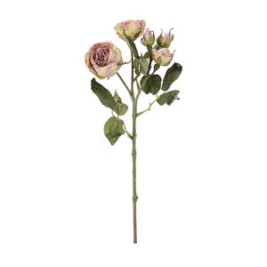 rose Rose Cocoa Green Dry Flower Artificial Flower