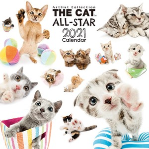 Exciting Calendar Cat Calendar All Star