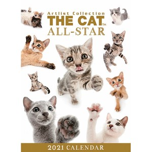 Exciting Calendar Cat Table-top Calendar All Star