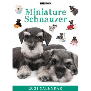 Exciting Calendar Table-top Calendar Miniature Objects and Ornaments Ornament