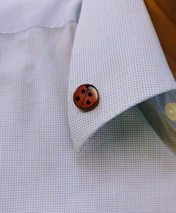 Ladybugs Echizen Lacquerware Wooden pin Badge Suits