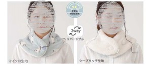 """2020 New Item"" cat Scarf"
