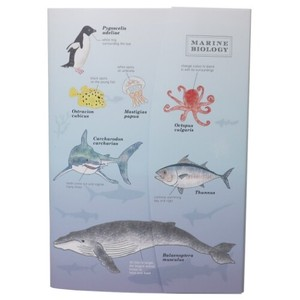 Flap Attached Mini Notebook Sea Creatures